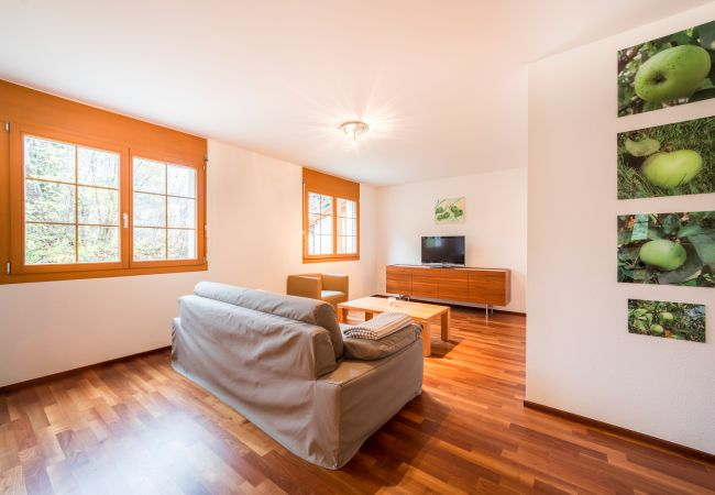 Chalets ferienh user ferienwohnungen chalets for Modernes waldhaus